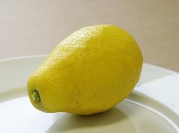"Citrus limon ""ZAGARA BIANCA"" (L.) Burm - Citrumelo"